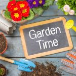 How to prepare a home garden in Kirkland, WA