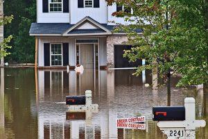 Flood Insurance in Kirkland, WA