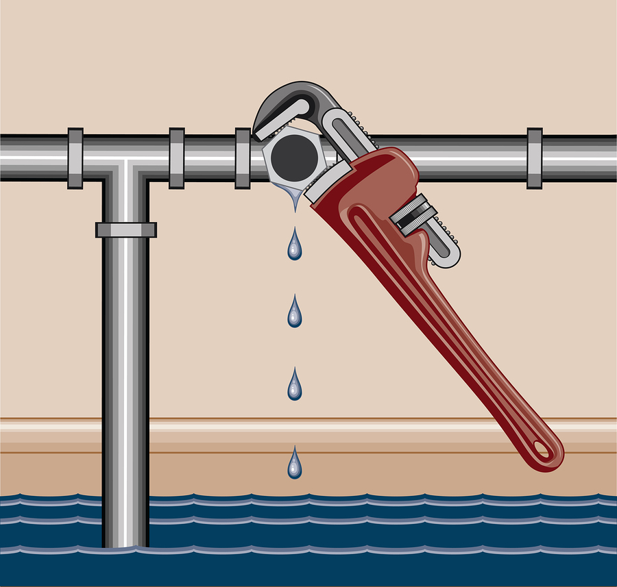 Where to Look For Water Leaks in Your Kirkland, WA home