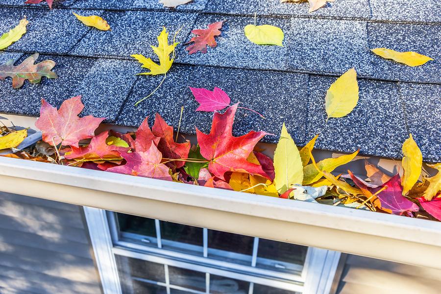 Fall Home Maintenance Checklist for your Kirkland, WA home